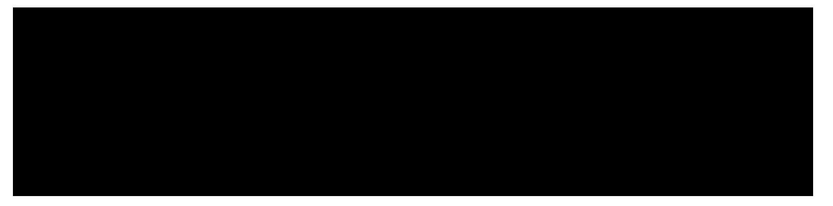 Sameside-Logo-Black