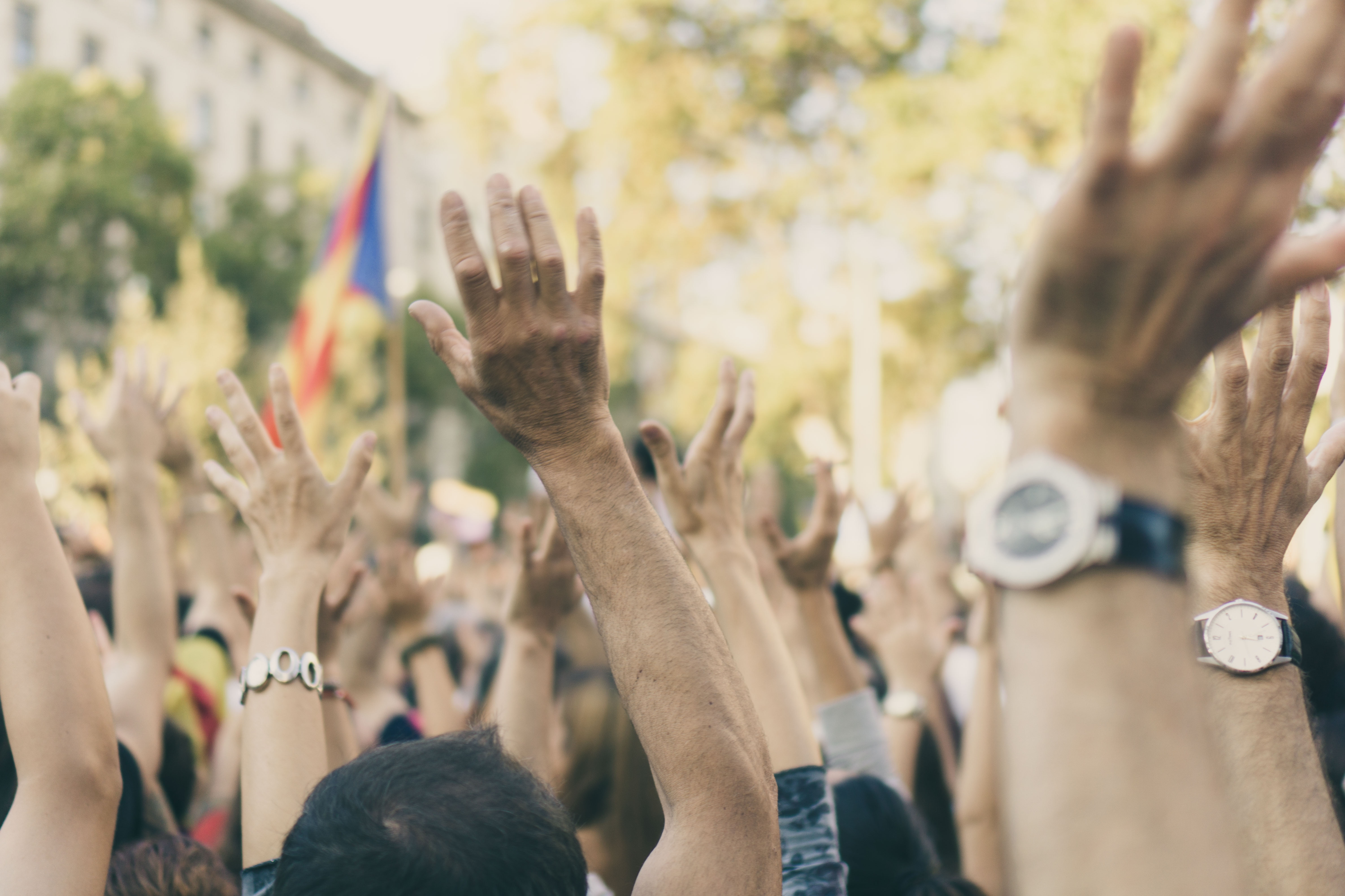 crowd of hands at a march or protest